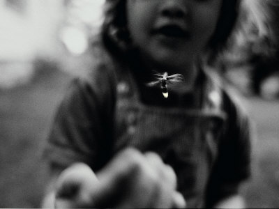A Young Girl Reaches Out for a Firefly Photographic Print