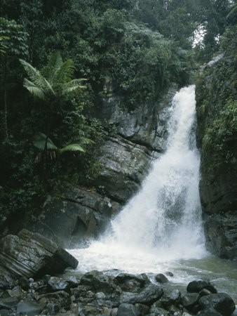 A Waterfall in the Tropical Rainforest El Yunque Park in Puerto Rico Photographic Print by Taylor S. Kennedy