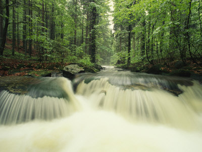 Waterfall Time Exposure, Bayerischer Wald National Park, Germany Photographic Print
