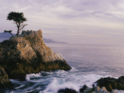 Lone Cypress Tree on a Rocky Point Near Pebble Beach Photographic Print by Mark Cosslett