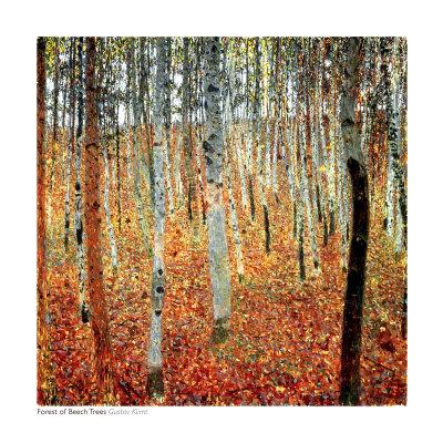 Forest of Beech Trees, c.1903 Prints by Gustav Klimt