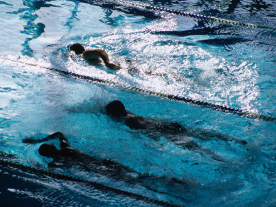 Doing Laps at Cook and Phillip Swimming Pool, Sydney, Australia Photographic Print by Greg Elms