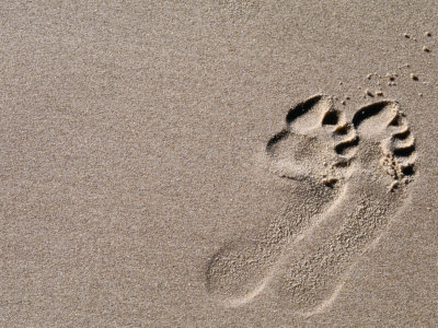 Footprints on Sand, Australia Photographic Print by Oliver Strewe