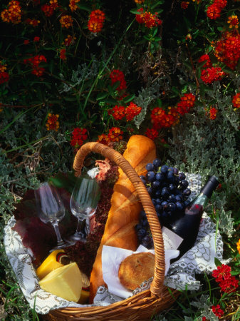 Picnic Basket (Wine, Bread & Cheese) in Bed of Flowers, Western Australia, Australia Lámina fotográfica por John Hay