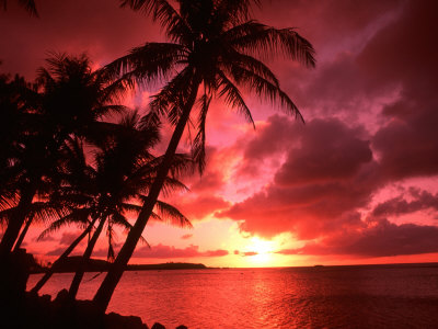 Palms And Sunset at Tumon Bay, Guam Photographie