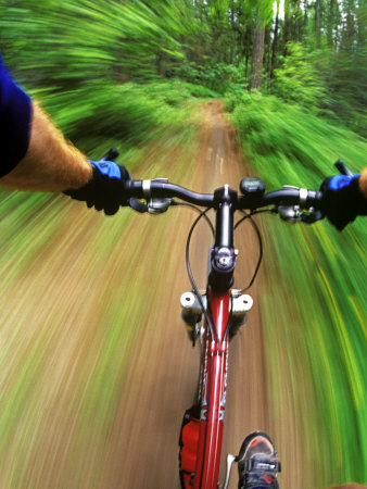 Mountain Bike Trail Riding Photographic Print by Chuck Haney