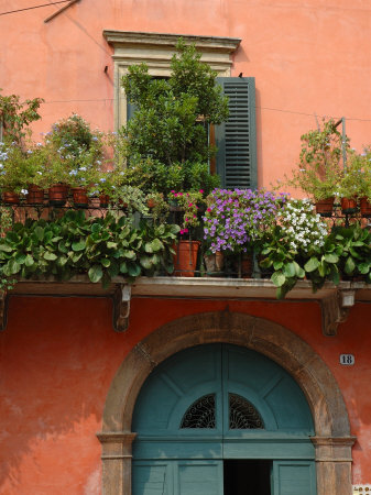 Balcony Garden in Historic Town Center, Verona, Italy Photographic Print by Lisa S. Engelbrecht