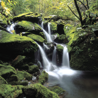 A Cascading Waterfall Photographic Print