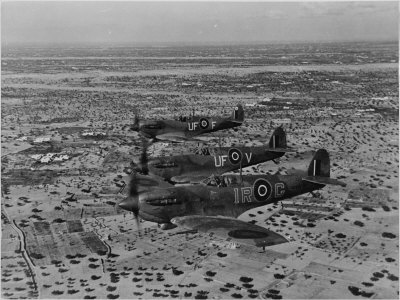 Formation of Spitfires Over North Africa, circa 1943 Premium Poster
