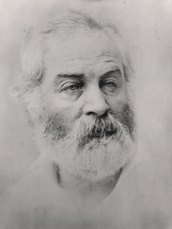 Walt Whitman Premium Poster
