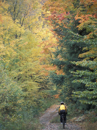 Mountain Biking on Old Logging Road of Rice Hill, Green Mountains, Vermont, USA Photographic Print by Jerry & Marcy Monkman