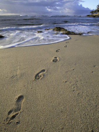 Footprints in the Sand, Turtle Bay Resort Beach, Northshore, Oahu, Hawaii, USA Photographic Print by Darrell Gulin