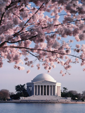 Jefferson Memorial things to see in Washington D.C. photo poster