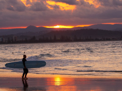 Surfer at Sunset, Gold Coast, Queensland, Australia Photographic Print by David Wall
