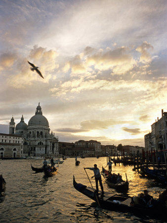 Grand Canal, Santa Maria della Salute Church, Gondolas, Venice, Italy Photographic Print by David Barnes