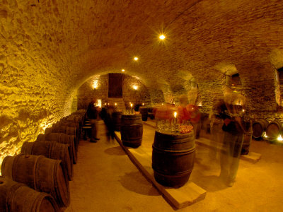Wine Cellar of Chateau de Pierreclos, Burgundy, France Photographic Print by Lisa S. Engelbrecht