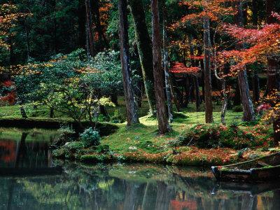 オールポスターズのSaiho-Ji Garden in Autumn Kyoto Japan写真