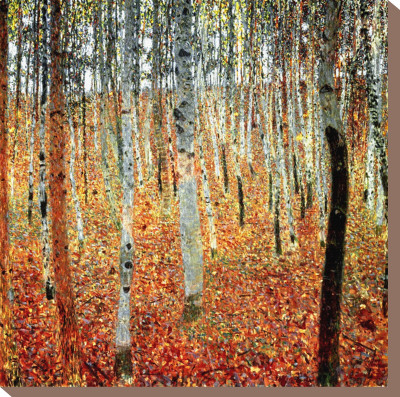 Forest of Birch Trees, c.1903 Stretched Canvas Print