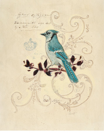 Filigree Jay Art Print