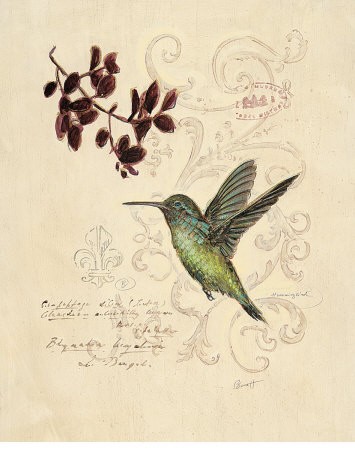 Filigree Hummingbird Kunstdruck