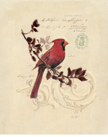 Filigree Cardinal Kunstdruck