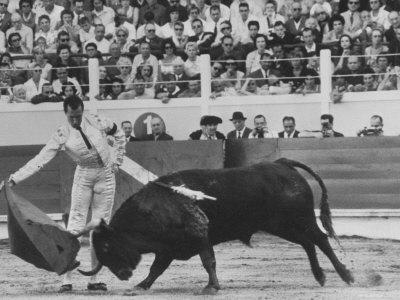 Matador Luis Miguel Dominguin During Bullfight Premium Photographic Print by James Burke