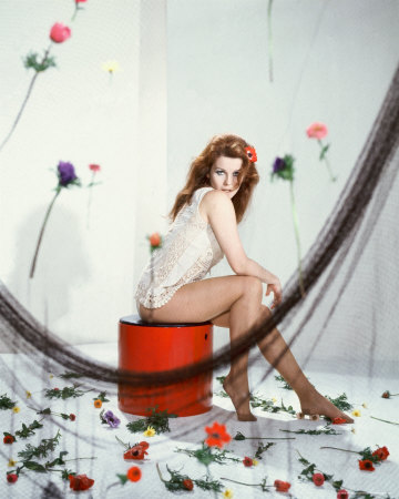 Ann-Margret Photo