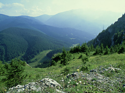 Nizke, View from Nature Reserve on Ohniste Plateau 1538M, Slovakia Photographic Print by Richard Packwood