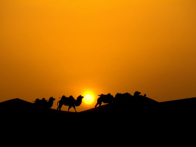 Silhouette at Dawn, Silk Road, China Photographic Print by Keren