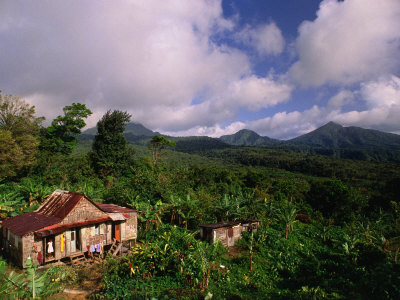 Overhead of House in Rainforest, Roseau Valley, Dominica Photographic Print by Michael Lawrence