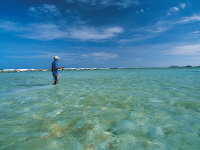 Man in Water Bone Fishing Photographic Print by Timothy O'Keefe