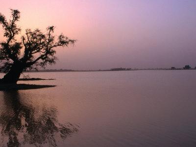 Dusk Over Lake Chad, Niger Fotografisk tryk af Oliver Strewe