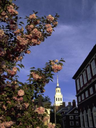 Lowell House, Harvard, Cambridge, MA Photographic Print by James Lemass