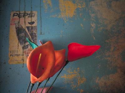 Colorful Still Life, Oaxaca, Mexico Photographic Print by Judith Haden