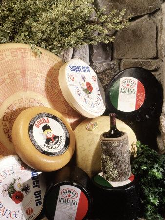 Display of Cheese Photographic Print by Dan Gair