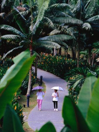 Women Walking in Singapore Botanic Gardens, Singapore, Singapore Photographic Print by Phil Weymouth