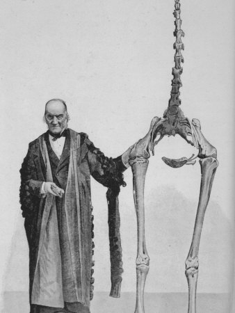 Sir Richard Owen Poses Beside the Skeleton of a Moa Photographic Print