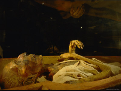 Visitors Peer at the Mummified Remains of Ramses Ii Photographic Print