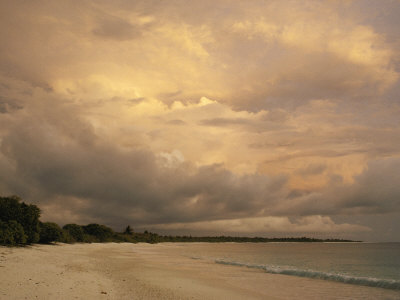 A Scenic View of a Beach at Twilight Photographic Print by Bill Curtsinger