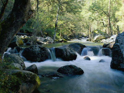 Woodland View of a Small Creek Flowing over Boulders Photographic Print by Marc Moritsch