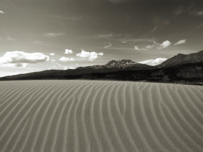 Rows of Sand Dunes Stretch Toward the Mountains in Alaska Photographic Print by Barry Tessman
