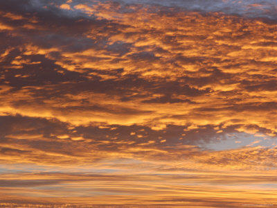 A Bright Yellow Sunrise Reflects on the Clouds Photographic Print by Stacy Gold