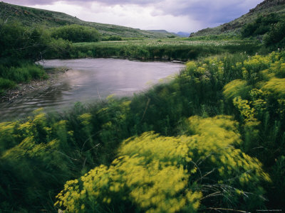 A Creek Bends Through a Lush Valley Photographic Print by Melissa Farlow