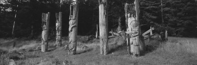Totem Poles Stand Near an Abandoned Haida Village Photographic Print by Barry Tessman