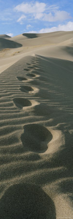 Footprints in the Sand Photographic Print by Bill Hatcher