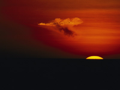 Red Sky at Sunset with the Sun on the Horizon and a Goose-Shaped Cloud Photographic Print by Tim Laman