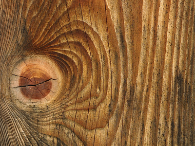 wood close up