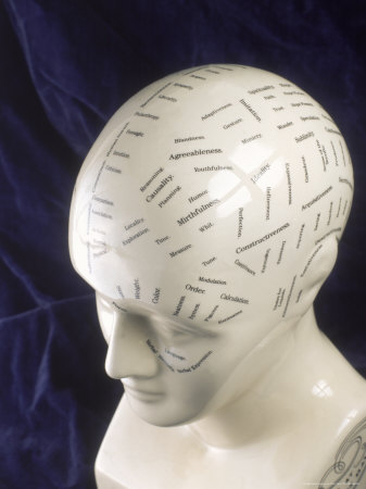 Physiognomic Bust, Human Characteristics Fotografisk tryk