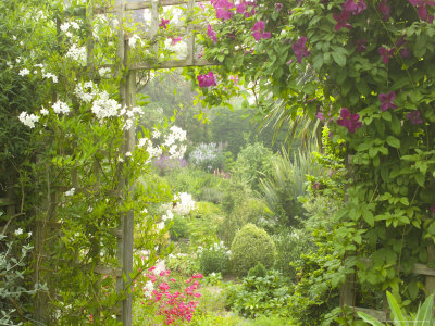 View Through Trellis Arch of Clematis Etoil Violette into Garden Photographic Print