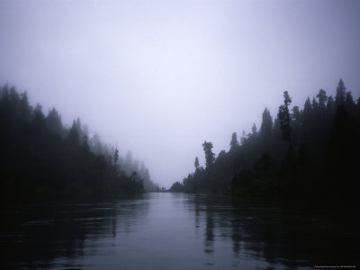 Foggy River, Chile Photographic Print by Michael Brown